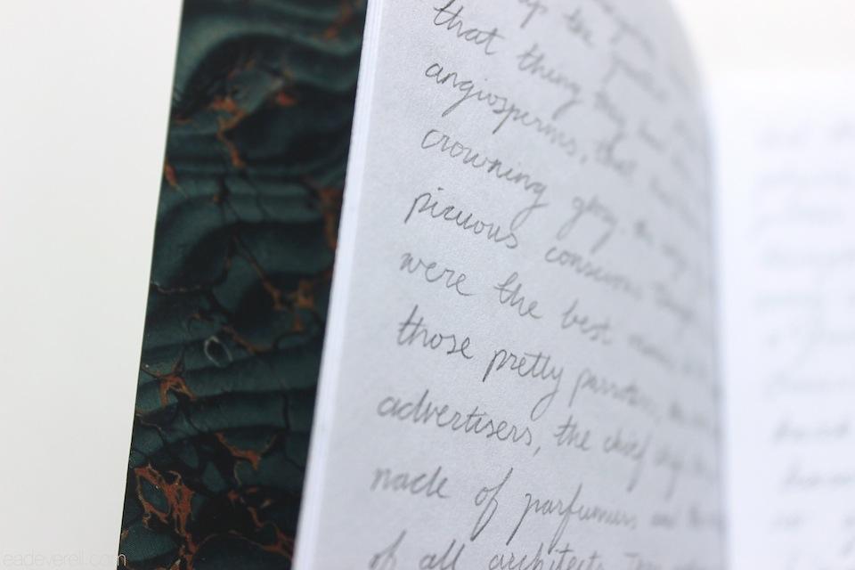 Book Endpaper
