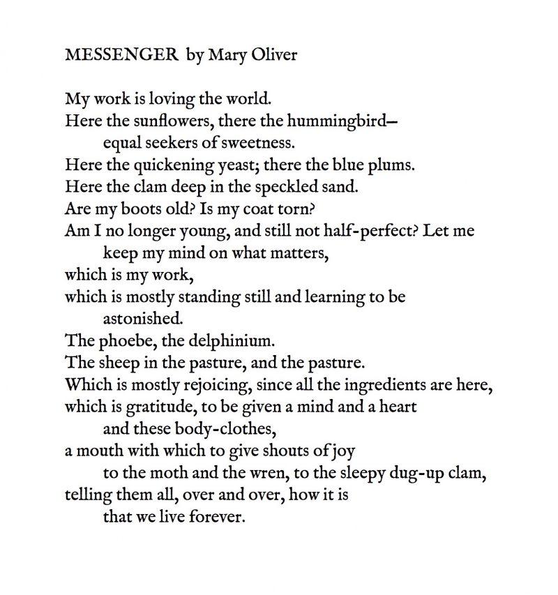 More Alternative Love Poems Creative Writing Blog