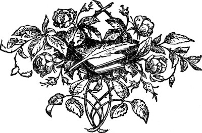 Roses, book & quill