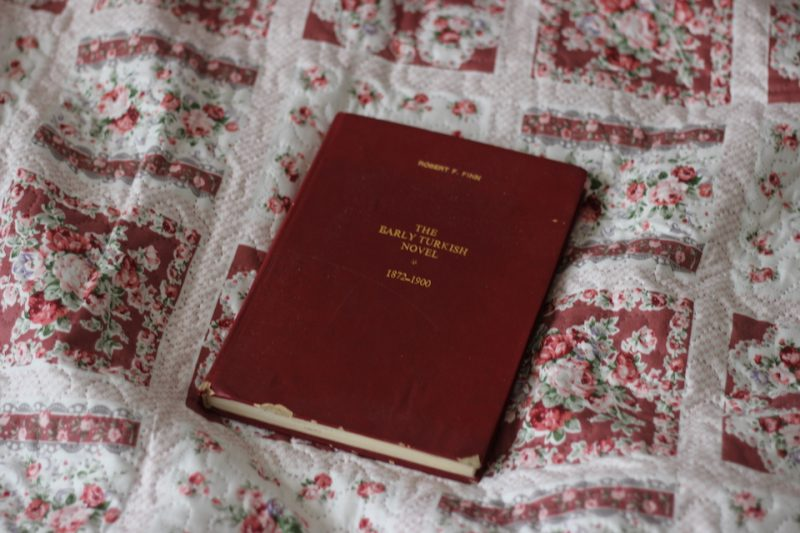 The Early Turkish Novel